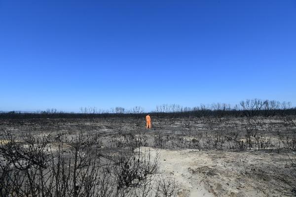 Kebakaran hutan menghanguskan Flinders Chase National Park di Pulau Kangguru, barat daya Adelaide, Australia, Selasa (7/1/2020). - AAP Image/David Mariuz via Reuters