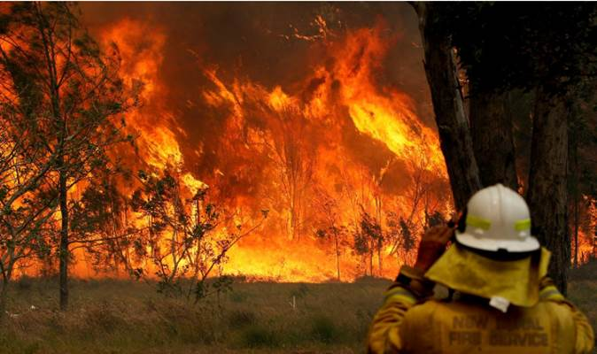 Petugas pemadam kebakaran memonitor pergerakan api di Old Bar, New South Wales, Australia, 9 November 2019. - AAP/Shane Chalker via REUTERS
