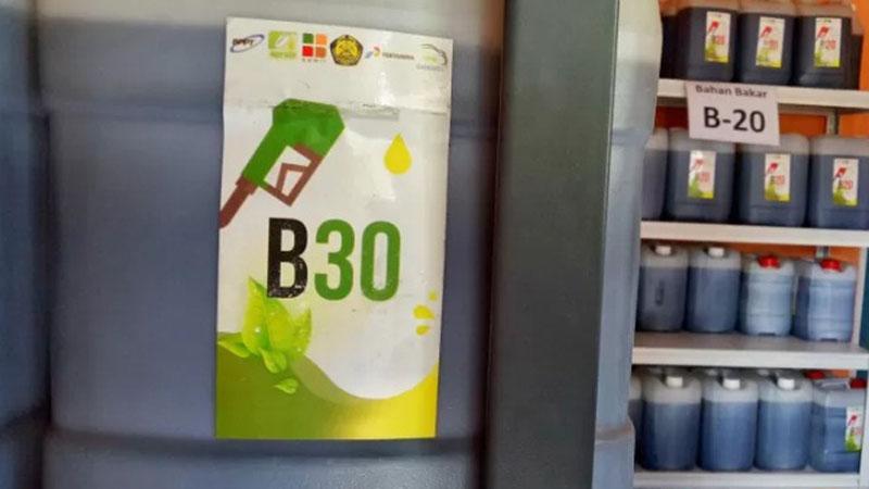 Bahan bakar biodiesel B30, salah satu energi baru terbarukan. - Antara/Chairul Rohman