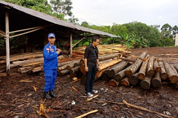 850 batang kayu log dan kayu olahan ilegal yang disita Direktorat Polisi Air dan Udara Polda Kalimantan Barat, di Sungai Landak. - Antara