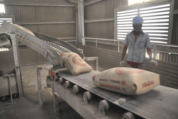 Aktivitas pekerja Semen Indonesia di Packing Plant Banjarmasin, Kalimantan Selatan. - Bisnis/Peni Widarti