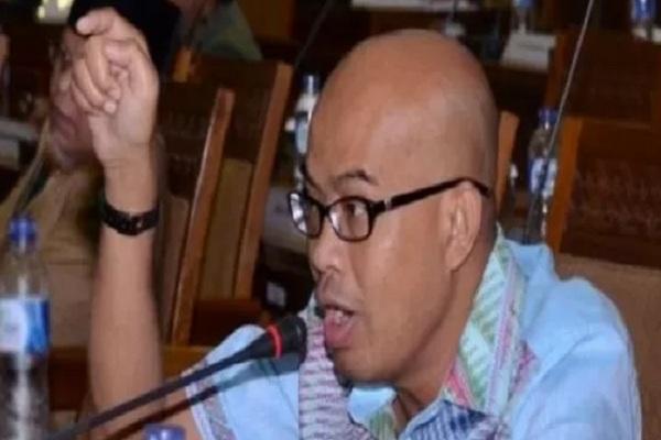 Wakil Ketua Komisi III DPR RI Desmond Junaidi Mahesa. - Antara