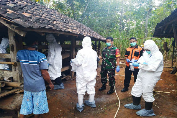 Sejumlah petugas memeriksa dan mengevakuasi sapi yang mati mendadak milik Jumiyo di Dusun Grogol 4, Desa Bejiharjo, Kecamatan Karangmojo, Gunungkidul, Kamis (27/6/2019). - Istimewa
