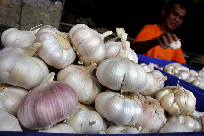 Pedagang membersihkan bawang putih  - ANTARA/Arnas Padda