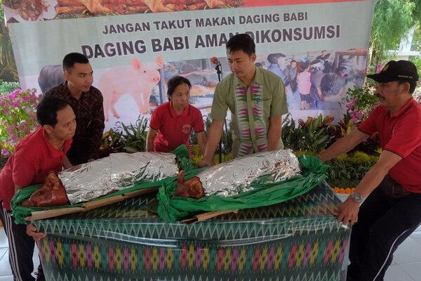 Petugas menyiapkan babi guling saat sosialisasi daging babi yang aman dikonsumsi, menyusul adanya kekhawatiran penyebaran virus African Swine Fever (ASF) di Denpasar, Bali, Jumat (7/2/2020). Kegiatan yang digelar Pemerintah Provinsi Bali tersebut untuk mengimbau masyarakat dan wisatawan agar tidak takut mengonsumsi daging babi menyusul fenomena penyebaran virus African Swine Fever (ASF) yang diduga menyebabkan 808 ekor babi mati di Bali. - Antara/Nyoman Hendra Wibowo