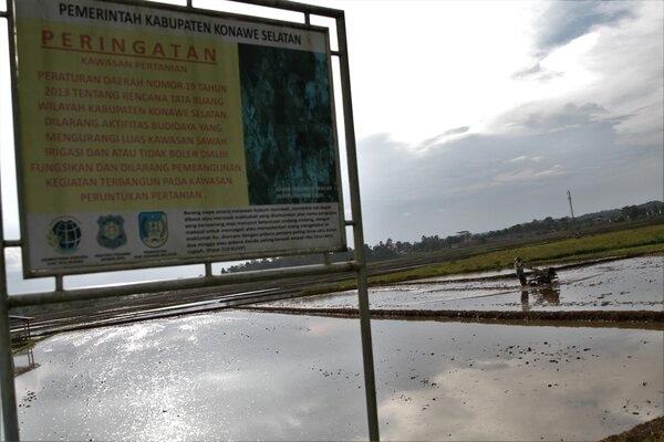 Seorang jasa pembajak sawah dengan traktor tangan menuntaskan pekerjaannya di areal persawahan di Kelurahan Ranomeeto, Kabupaten Konawe Selatan, Sulawesi Tenggara, Kamis (13/2/2020). Petani padi di wilayah tersebut mengeluhkan kenaikan jasa pembajak sawah dengan mesin tractor naik dari Rp 1.4 juta per hektare menjadi Rp 2 juta per hektarenya terjadi sejak awal tahun 2019 akibat belasan traktor tangan bantuan dari pemerintah rusak. - Antara/Jojon