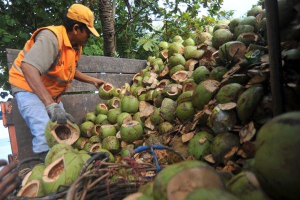 Petugas kebersihan memindahkan limbah kelapa muda di Pantai Padang, Sumatra Barat, Rabu (10/4/2019). Dinas Lingkungan Hidup (DLH) Kota Padang mencatat, produksi limbah kelapa muda di kota itu mencapai 7 ton per hari namun belum bisa dimanfaatkan secara maksimal karena terkendala alat yang belum memadai./ANTARA FOTO - Iggoy el Fitra