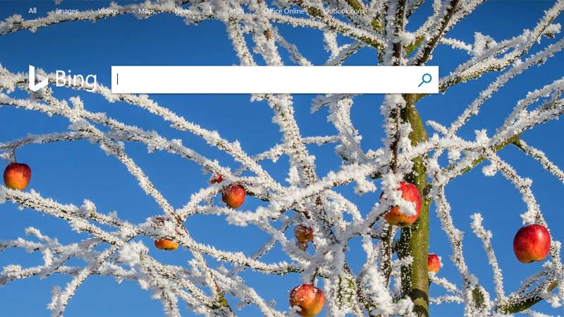 Mencari pencari Bing dari Microsoft Corporation. China memblokir Bing bagi pengguna Internet di Negeri Tirai Bambu itu mulai Rabu 23 Januari 2019. Foto: bing.com