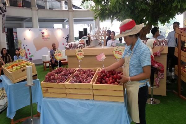 Ilustrasi - Suasana Melbourne Market di Cilandak Town Square -  Bisnis / Reni Efita Hendry