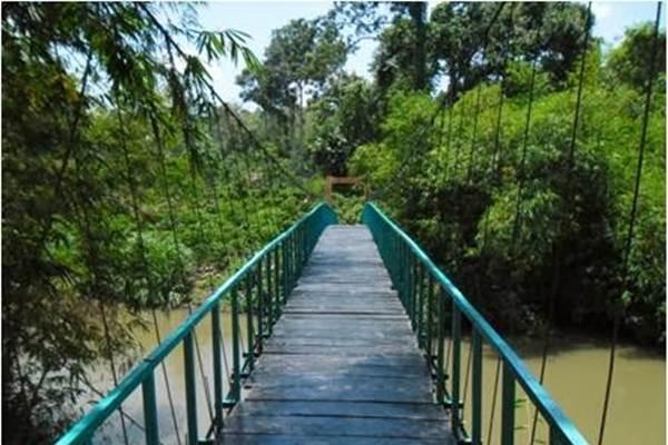 Ilustrasi - pnpmmpdkabrejanglebong.blogspot.co.id