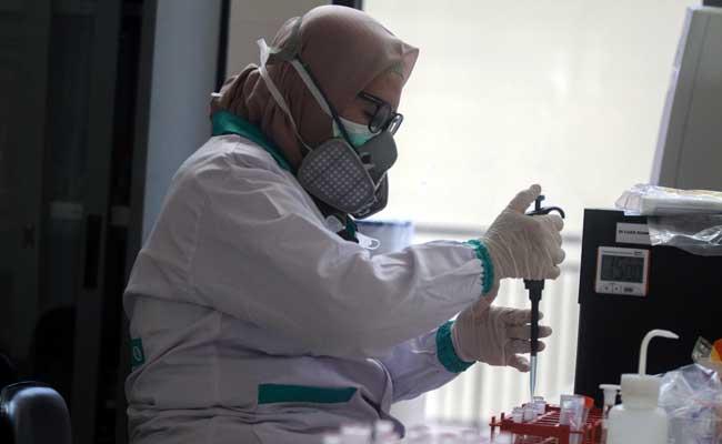 Dokter patologi klinik memeriksa sampel media pembawa virus Corona untuk penelitian di Laboratorium Balai Besar Karantina Pertanian Surabaya di Juanda, Sidoarjo, Jawa Timur, Kamis (6/2/2020). ANTARA FOTO - Umarul Faruq