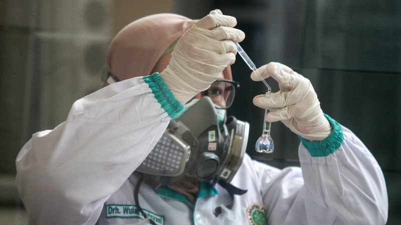 Dokter patologi klinik memeriksa sampel media pembawa virus Corona untuk penelitian di Laboratorium Balai Besar Karantina Pertanian Surabaya di Juanda, Sidoarjo, Jawa Timur, Kamis (6/2/2020). - ANTARA FOTO/Umarul Faruq