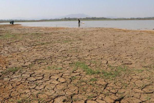 Warga beraktivitas di Wasuk Gajah Mungkur di desa Tegalharjo, Eromoko, Wonogori pada Rabu 25 Juli 2018. Saat musim kemarau air waduk mulain menyusut dan dimanfaatkan sebagai lahan pertanian. - Bisnis/Sunaryo Haryo Bayu