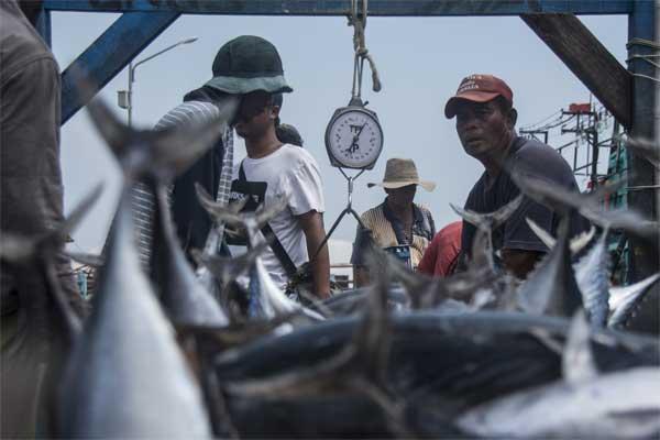 Nelayan menimbang ikan hasil tangkapan di Pelabuhan Ikan Muara Angke, Jakarta, Senin (8/5). - Antara/Aprillio Akbar