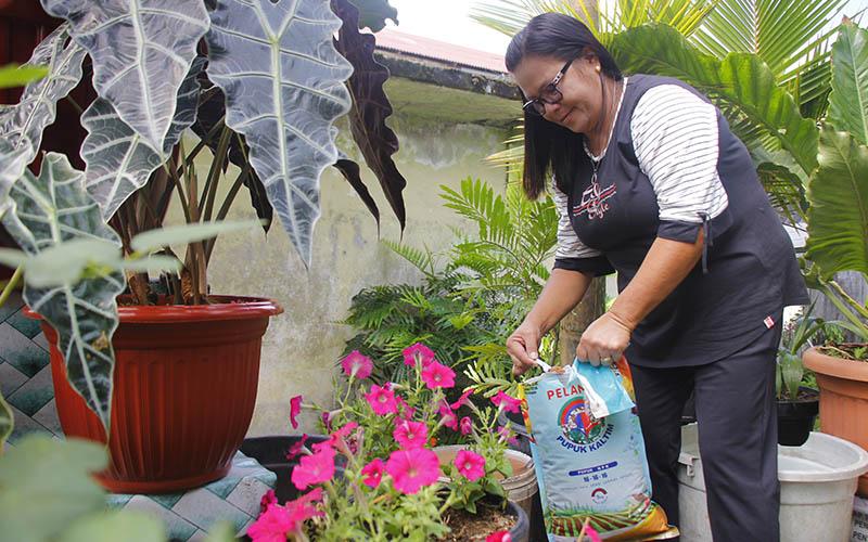 Penjual bunga di Kaskasen Kota Tomohon, Tanta Olla, tengah merawat bunga menggunakan pupuk NPK Pelangi 16-16-16 produksi Pupuk Kaltim.  -  Istimewa/Pupuk Kaltim