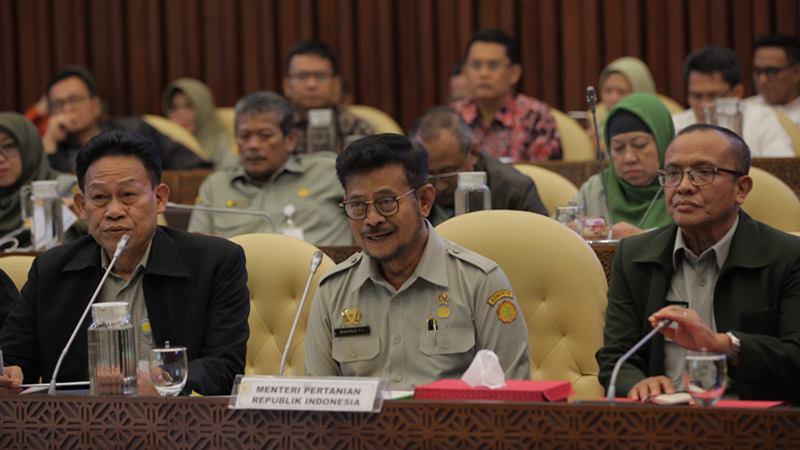Menteri Pertanian (Mentan) Syahrul Yasin Limpo (tengah) mengikuti rapat dengar pendapat (RDP) dengan Komisi IV DPR di komplek Parlemen, Jakarta, Senin (17/2/2020). - ANTARA / Reno Esnir