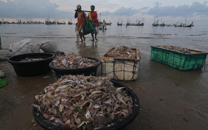 Nelayan menurunkan ikan tangkapannya di Pantai Jumiang, Pamekasan, Jawa Timur, Selasa (7/4/2020). Berdasarkan data KKP ekspor perikanan Indonesia periode Januari-Maret 2020 ke sejumlah negara naik dari periode sebelumnya diantaranya AS dari 36.686,99 menjadi 44.748,98 ton, Thailand dari 11.372,78 menjadi 27.264,73 ton, Malaysia dari 13.008,65 menjadi 15.883,49 ton dan Taiwan dari 7.173,04 menjadi 7.823,77 ton. - Antara/Saiful Bahri