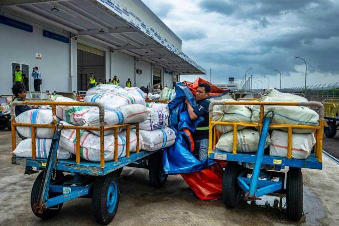 Ilustrasi petugas beraktivitas di Terminal Kargo dan Pos Bandara. - ANTARA/Aji Styawan