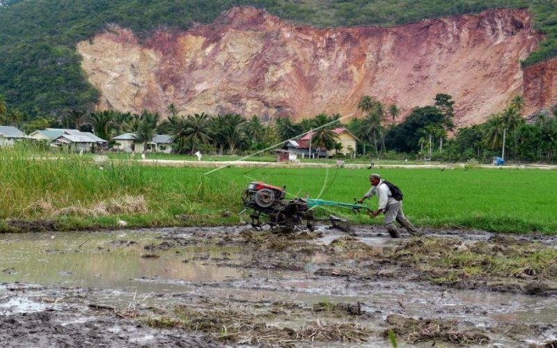 Ilustrasi - Petani tengah melakukan cetak sawah di lahan gambut di Lhoknga, Aceh Besar. - Antara/Ampelsa