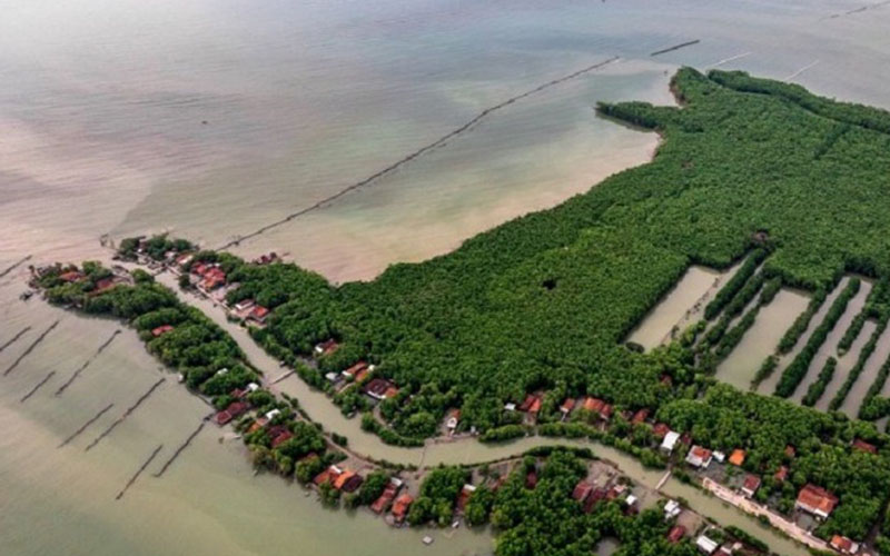 Foto udara permukiman warga yang dikelilingi hutan mangrove (bakau) di Desa Bedono, Sayung, Demak, Jawa Tengah, Rabu (24/4/2019)./Antara - Aji Styawan
