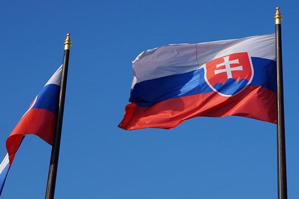 Bendera Slovakia - Istimewa