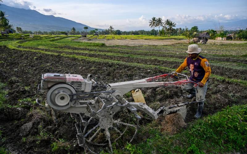 Petani membajak sawahnya menggunakan traktor tangan. - Antara