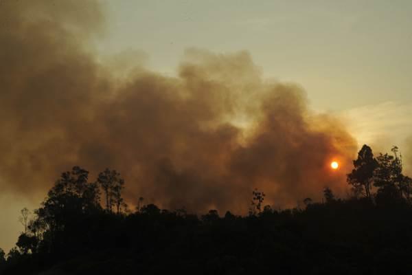 Lokasi kebakaran lahan di Desa Pulo Keronggan, Kec Pedamaran Timur, Ogan Komering Ilir, Sumsel, Minggu 6 September 2015.  - Antara