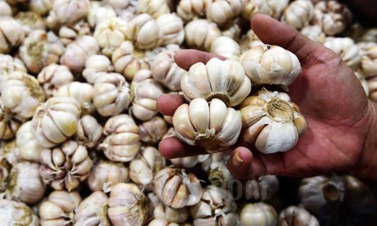 Pedagang menunjukan bawang putih di salah satu pasar./Bisnis - Abdurachman