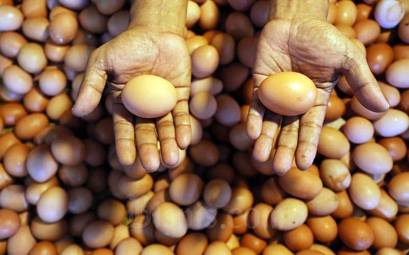 Ilustrasi-Pedagang menata telur di Pasar Benhil, Jakarta, Senin (13/4/2020). - Bisnis/Eusebio Chrysnamurti