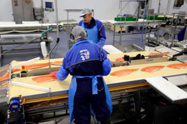 Proses pengemasan ikan salmon - seafood.no