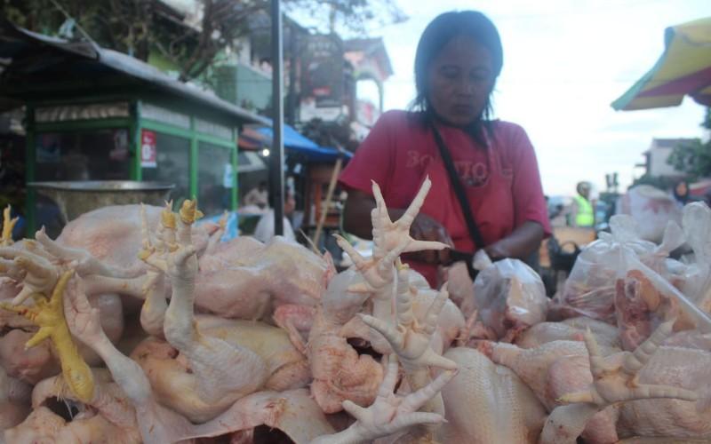 Pedagang ayam di Pasar Sumber Cirebon - Bisnis/Hakim Baihaqi