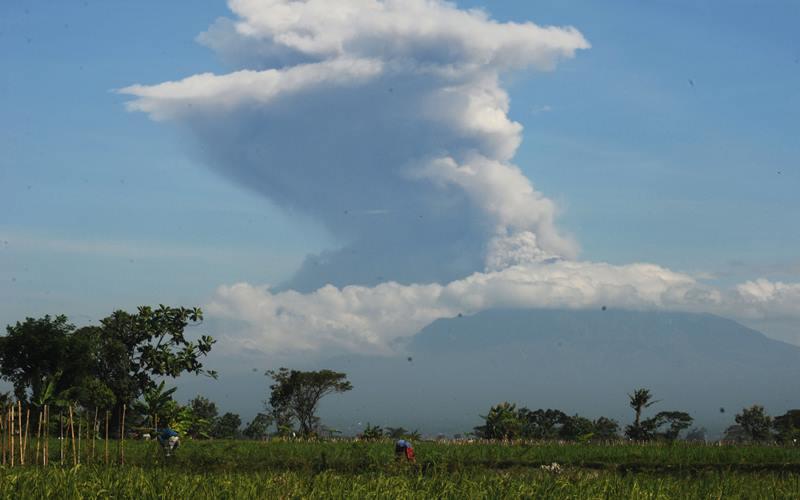 Erupsi Gunung Merapi terlihat dari Sawit, Boyolali, Jawa Tengah, Minggu (21/6/2020). Berdasarkan data pengamatan Balai Penyelidikan dan Pengembangan Teknologi Kebencanaan Geologi (BPPTKG), terjadi erupsi Gunung Merapi pada pukul 09.13 WIB dengan aplitudo 75 mm, durasi 328 detik dan tinggi kolom erupsi kurang lebih 6.000 meter dari puncak. ANTARA FOTO - Aloysius Jarot Nugroho