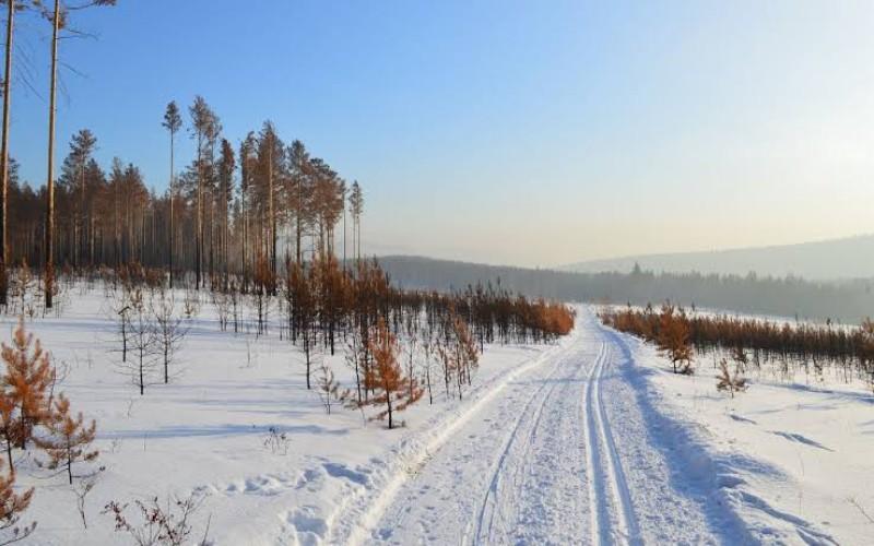 Wilayah dingin Siberia