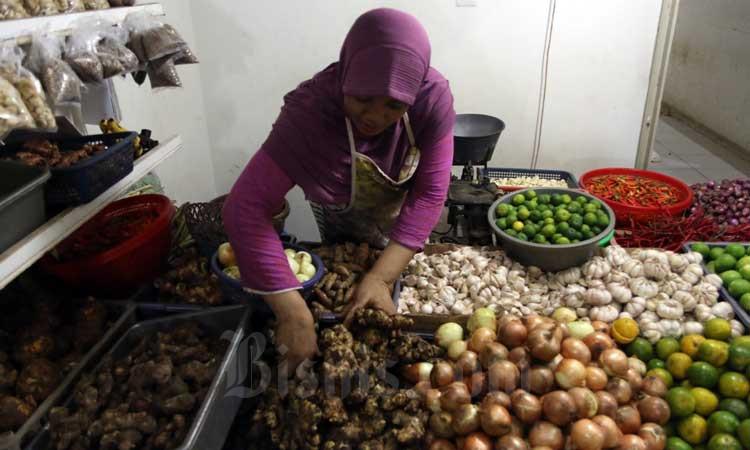 Pedagang menata jahe merah yang dijual di Pasar Rumput, Jakarta, Rabu n(4/3/2020). Bisnis - Eusebio Chrysnamurti