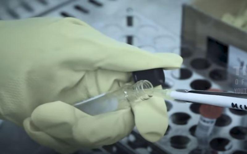 Uji terapi plasma darah untuk pasien Covid-19. JIBI - Bisnis/Nancy Junita
