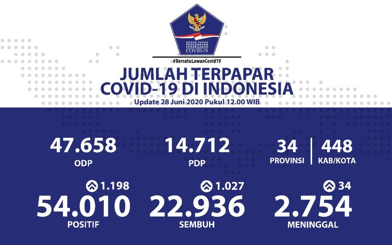 Grafis kasus Covid-19 di Indonesia per Minggu (28/6/2020). - BNPB