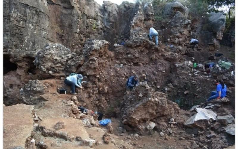 Ilmuwan Temukan Fosil Homo Erectus di Afrika Selatan