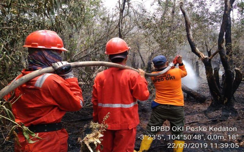Ilustrasi: Penanganan karhutla di Kabupaten OKI, Sumsel. istimewa