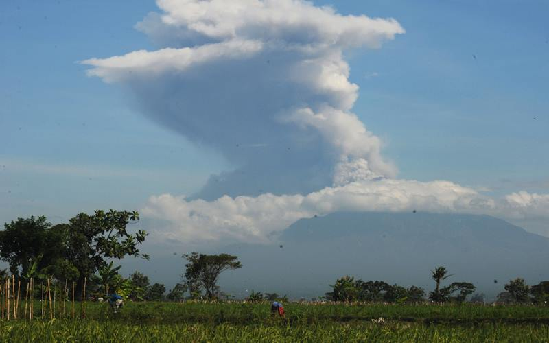 Erupsi Gunung Merapi terlihat dari Sawit, Boyolali, Jawa Tengah, Minggu (21/6/2020). Berdasarkan data pengamatan Balai Penyelidikan dan Pengembangan Teknologi Kebencanaan Geologi (BPPTKG), terjadi erupsi Gunung Merapi pada pukul 09.13 WIB dengan aplitudo 75 mm, durasi 328 detik dan tinggi kolom erupsi kurang lebih 6.000 meter dari puncak. - Antara/Aloysius Jarot Nugroho