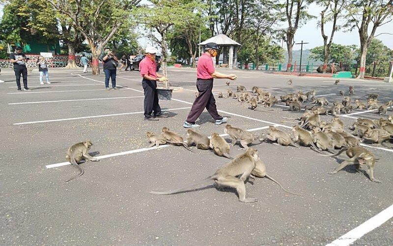 Destinasi wisata Goa Kreo Semarang dibuka kembali untuk umum.