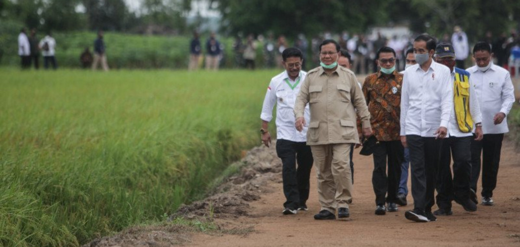 """Presiden Joko Widodo (kanan) bersama dengan Menteri Pertahanan Prabowo Subianto saat meninjau lahan yang akan dijadikan """"Food Estate"""" atau lumbung pangan baru di Pulang Pisau, Kalimantan Tengah, Kamis (9/7/2020). Pemerintah menyiapkan lumbung pangan nasional untuk mengantisipasi krisis pangan dunia. ANTARA FOTO - Hafidz Mubarak A"""