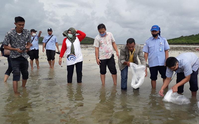 Restoking benih Clownfish bantuan pemerintah Tahun 2020 sebanyak 4.000 ekor di perairan laut Pulau Abang, Kelurahan Pulau Abang, Kecamatan Galang, Kota Batam. - Bisnks/Bobi Bani.