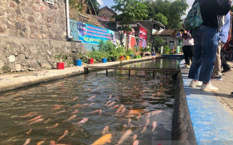 Hasil penataan kawasan kumuh di bantaran Sungai Gajah Wong Yogyakarta yaitu memanfaatkan aliran irigasi untuk budi daya ikan nila. - Antara/Eka AR