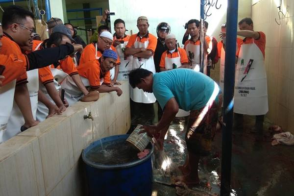 Kegiatan diseminasi Juleha di Rumah Potong Hewan Kota Malang beberapa waktu lalu. - Istimewa
