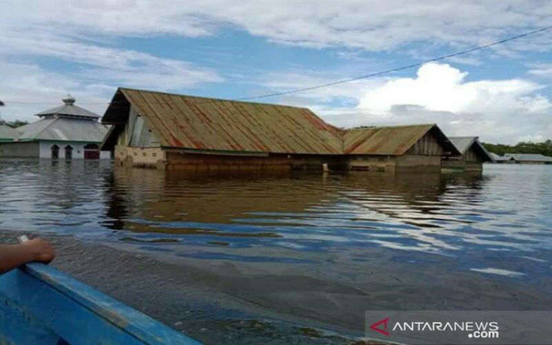 Banjir yang merendam sejumlah rumah di Kecamatan Pondidaha, Kabupaten Konawe, Sulawesi Tenggara. Air meredam rumah warga hingga setinggi atap rumah. - Antara/Harianto
