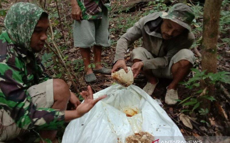 Hasil pencarian madu hutan di Dusun Pangisoreng, Desa Batu Putih, Kecamatan Mallawa, Kabupaten Maros, Sulsel, Minggu (26/7/2020). - Antara/Suriani Mappong