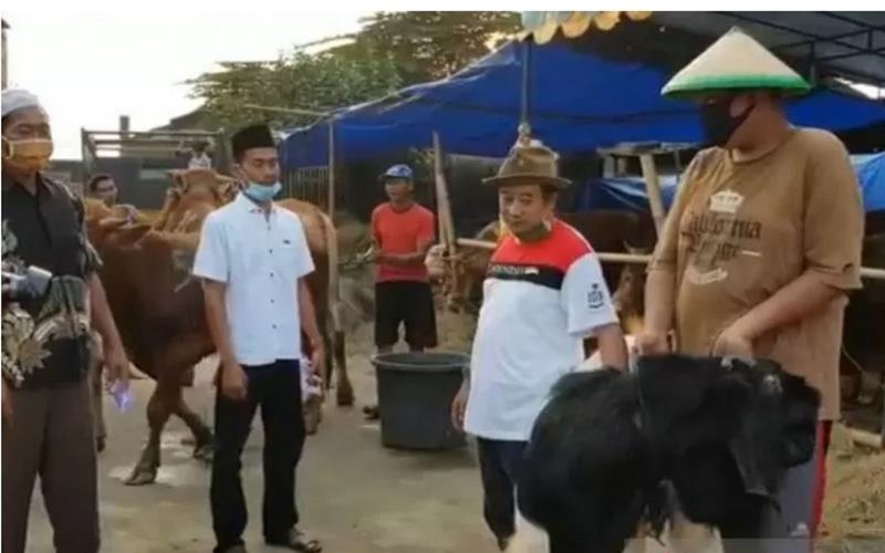 Pedagang hewan kurban, Adin (kedua dari kanan) menyerahkan satu ekor kambing jenis etawa kepada konsumen di Jalan Kincan, Pondok Kelapa, Duren Sawit, Jakarta Timur, Jumat (24/7/2020). - Antara