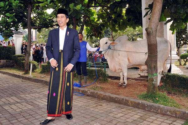 Presiden Joko Widodo di depan sapi kurban usai salat Iduladha 1438 H di Lapangan Merdeka, Kota Sukabumi, Jawa Barat, Jumat (1/9). Pada kesempatan tersebut, Jokowi menyampaikan sambutan terkait keberagaman di hadapan ribuan masyarakat Sukabumi yang ikut menunaikan shalat Iduladha. ANTARA FOTO/Presidential Palace - Agus Suparto