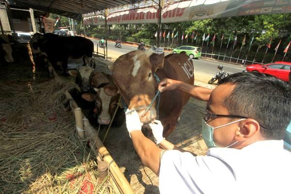 Petugas Suku Dinas Ketahanan Pangan, Kelautan dan Pertanian (KPKP) Jakarta Selatan memeriksa Kesehatan hewan kurban yang dijual di kawasan Jakarta Selatan, Senin (20/8). Pemeriksaan kesehatan itu untuk memastikan seluruh hewan kurban yang dijual oleh pedagang tersebut layak dijual dan dikonsumsi masyarakat.  - Antara