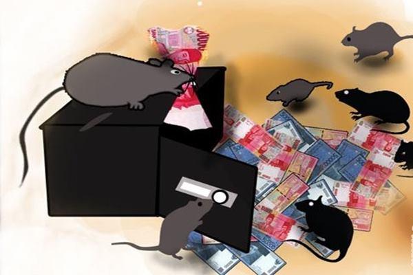 Ilustrasi korupsi - Antara